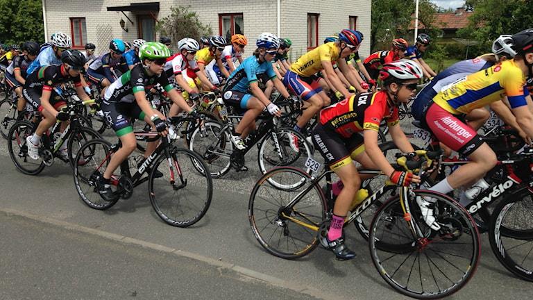 cykel cykelklunga