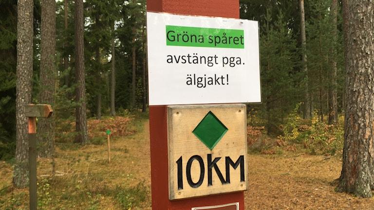 En skylt med texten Gröna spåret avstängt pga älgjakt! I bakgrunden syns skog.
