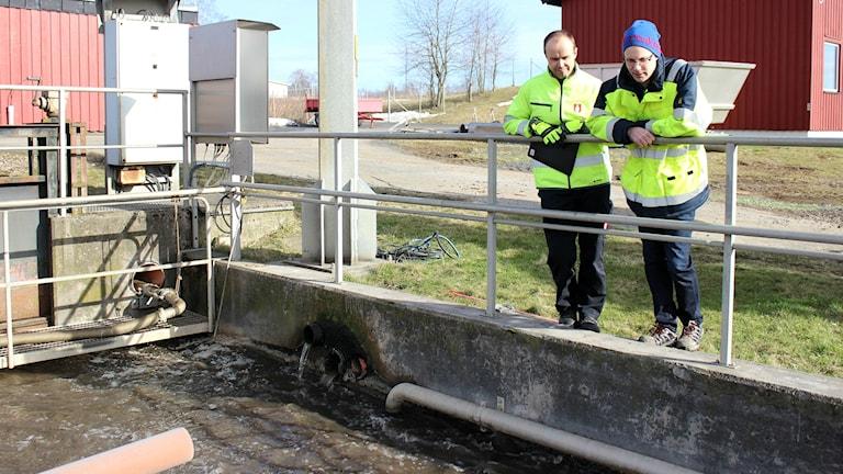 Enligt Sven-Eric Stenermark och Andreas Johansson på Skövde VA kan det snart bli dyrare VA-avgifter för invånarna i Skövde. Detta på grund av de höga halterna av tungmetaller i avloppsvattnet.