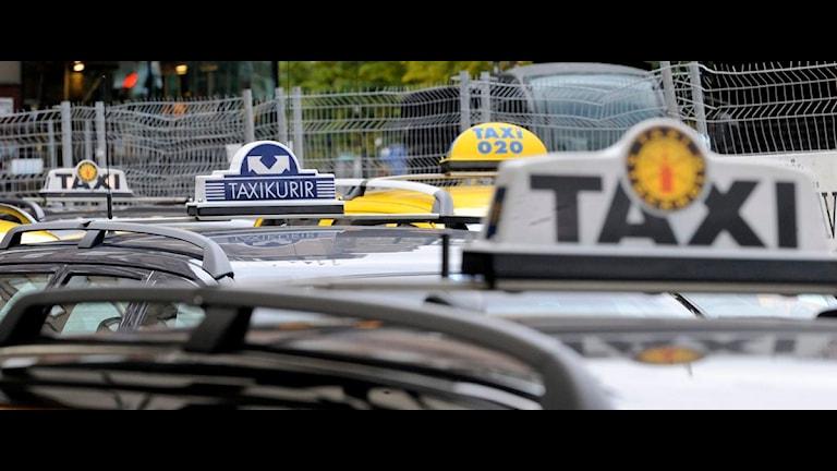 Taxibilar med skyltar. Foto: Bertil Ericson/Scanpix.