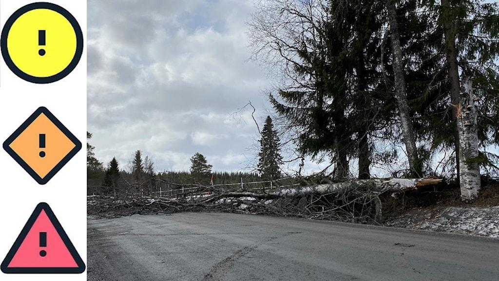 Till vänster visas varningssymbolerna för det nya systemet. Till höger i bild syns ett träd som blåst ner över en väg.