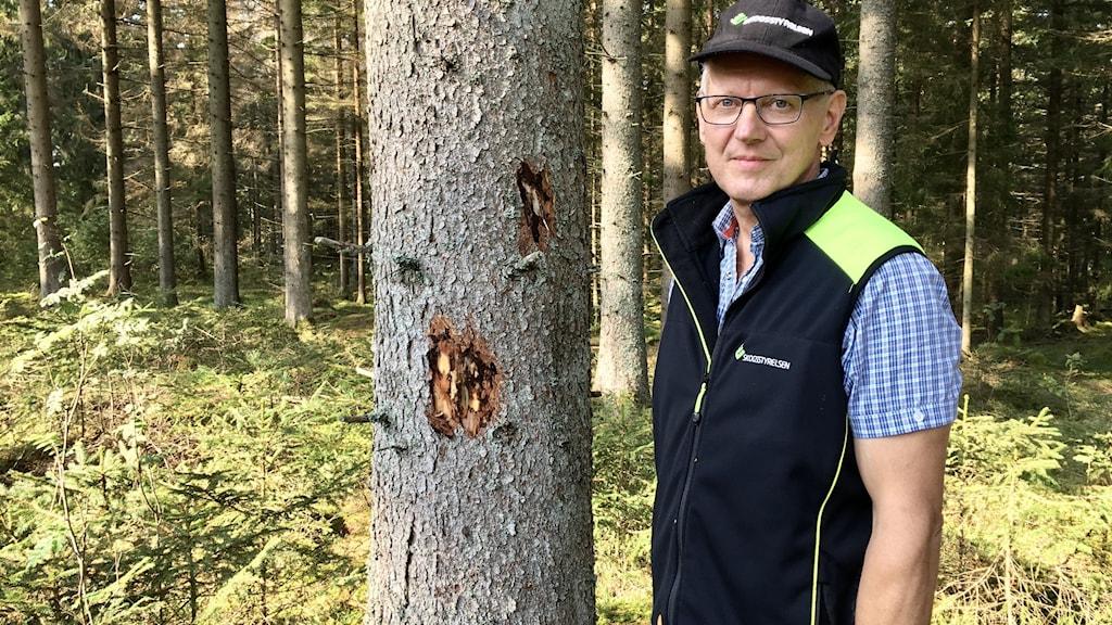 En man står i skogen nära ett träd. Han har glasögon och en mörkblå keps.