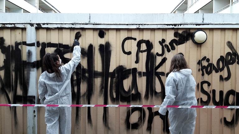 Carolina Falkholt Ryd Konstprojekt konst graffiti
