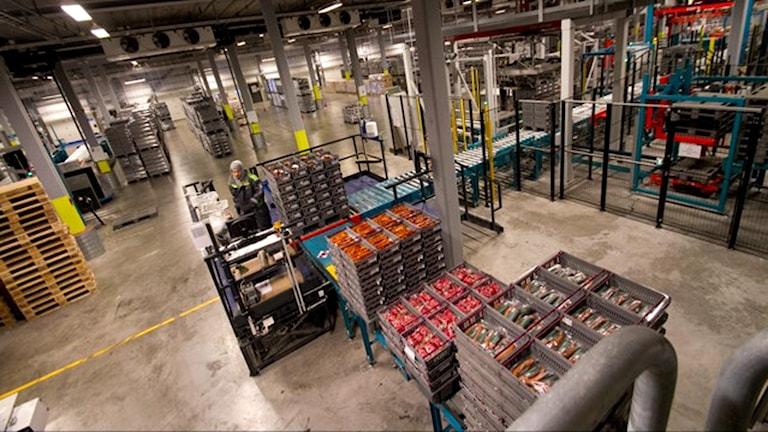 Insidan av lagret i Linköping. Härifrån fraktas sedan baconförpackningarna vidare till lager i Västerås och Helsingborg innan de körs ut till mataffärerna i Skaraborg.