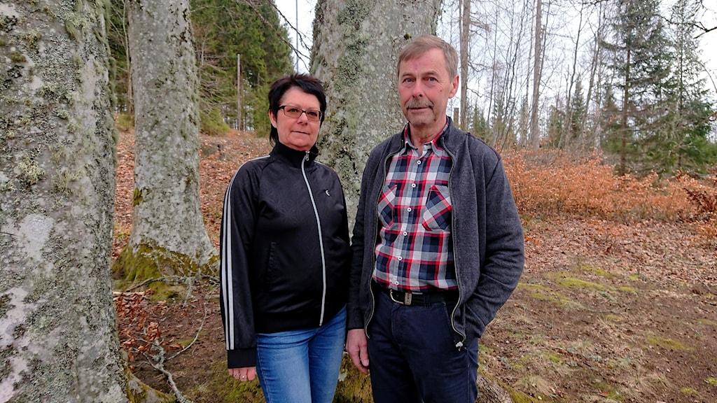 Två personer står i en skog.
