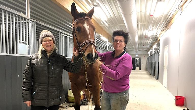 Marita Mattsson, hästen Ove och Ann Lindell.