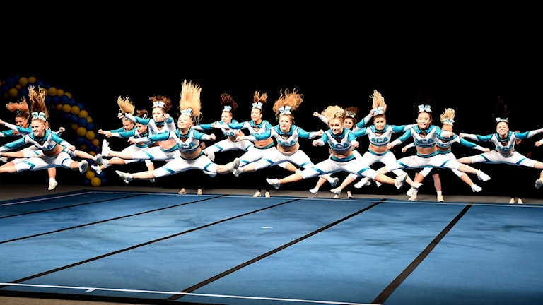 ACA (Artic Cheer Avalanches Titans)