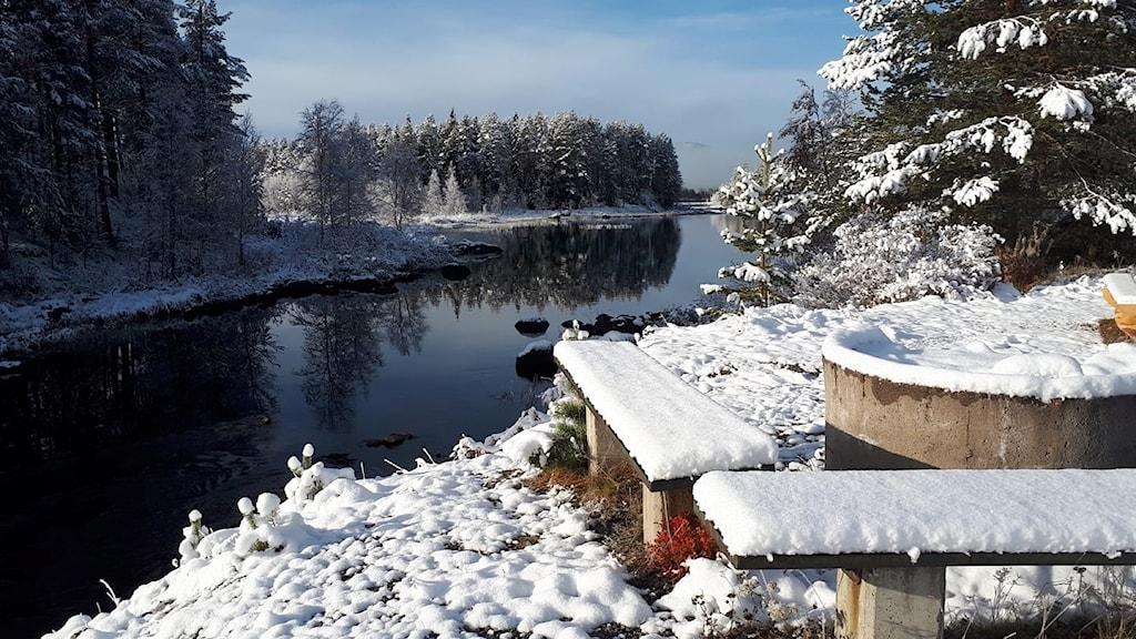 Den tidiga snön när den har lagt sig på rastplats Långträskälven efter Silvervägen är veckans bild.