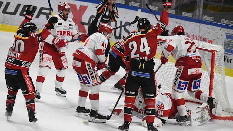Luleå Hockey Jublar