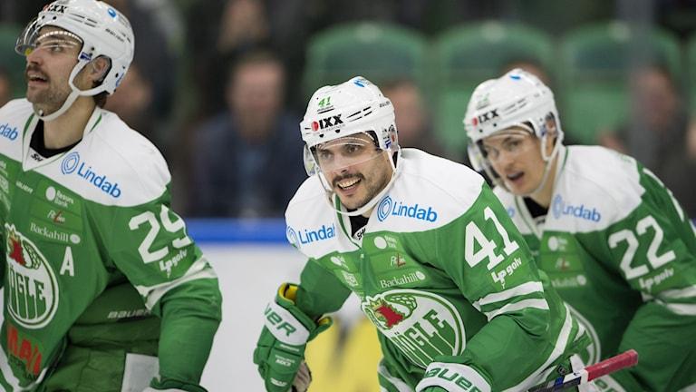Daniel Widing förstärker Luleå Hockey under den närmsta veckorna.