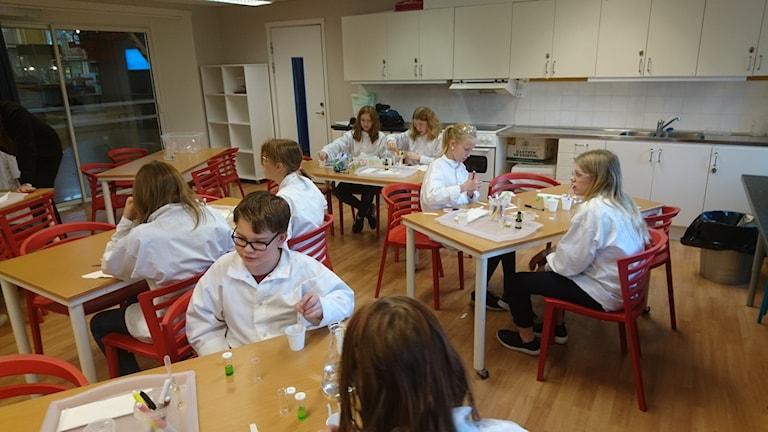 Sjätteklassare från Sunderbyn jobbar med experimentet.