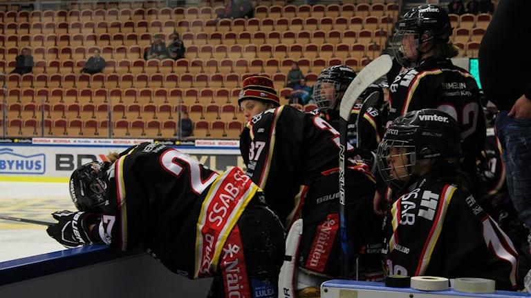 Förlust för Luleå hockey/MSSK