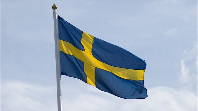 Vajande svensk flagga. Foto: Scanpix.