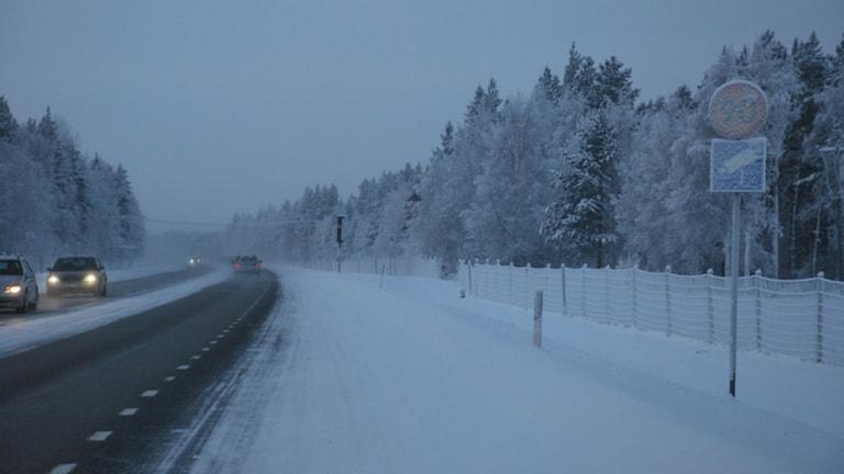90-skylt på väg 97 mellan Luleå och Boden. Foto: Sveriges Radio.