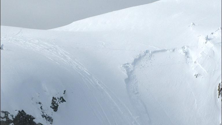 Lavinområde med snöskoterspår. Foto:Fjällsäkerhetsrådet.