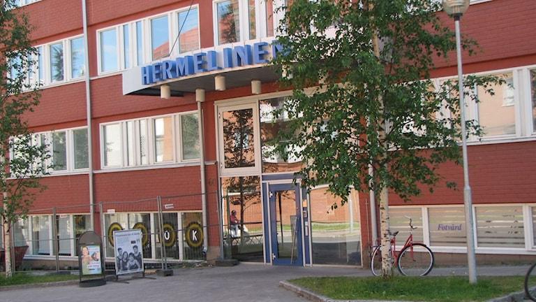 Hermelinen i Luleå. Foto: Linnea Luttu/Sveriges Radio