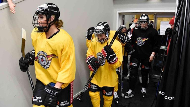 Luleå Hockey/MSSK på väg ut på isen.