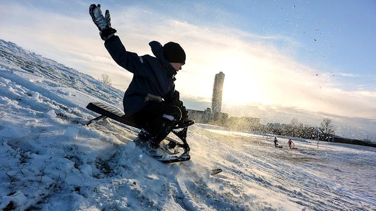 Barn som svischar nerför en backe på en snowracer.