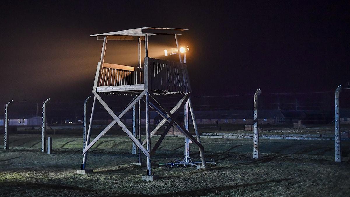 Förintelsen vid en minneshögtid i Auschwitz Birkenau
