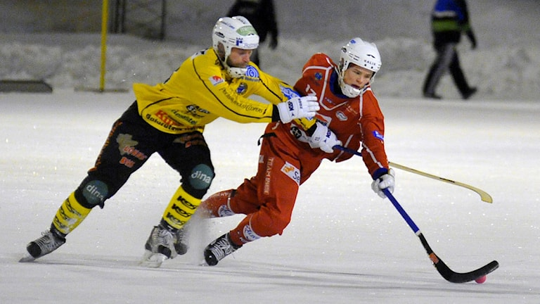 Kalix Bandys Johan Sundquist mot Broberg. Foto: Alf Lindbergh/Pressbilder.