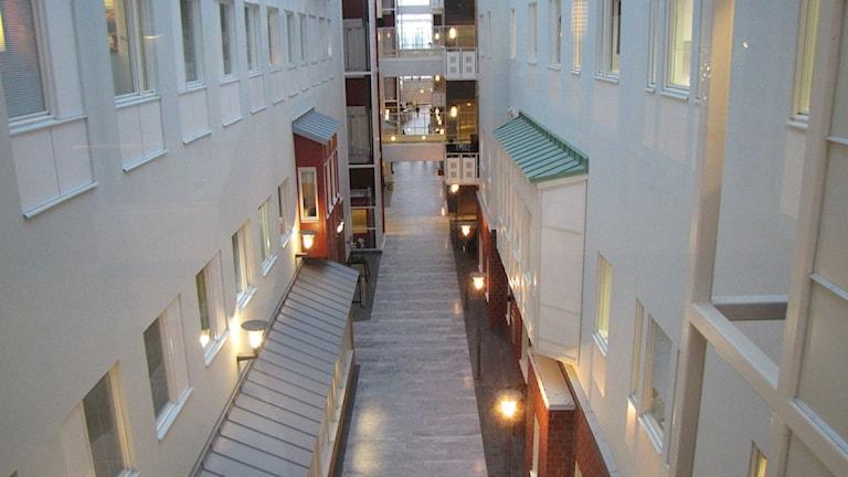 Korridor i Sunderby sjukhus. Foto: Linnea Luttu/Sveriges Radio