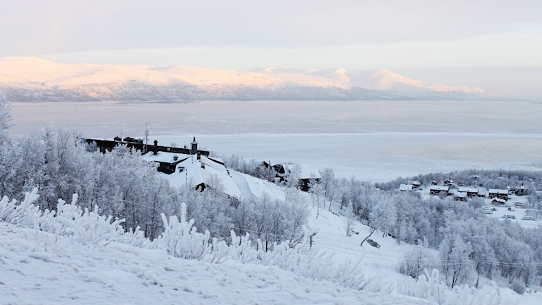 Det är ont om snö i Björklidens backar. Foto: Alexander Linder/ Sveriges Radio.