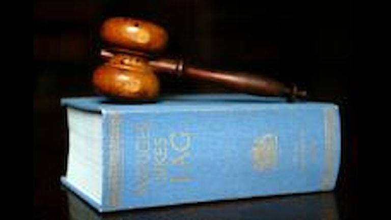 Många nya lagar träder i kraft i år.