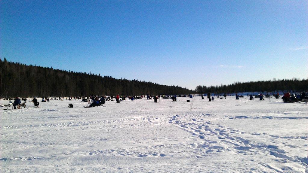 Lillbrännträsk utanför Sjulsmark.  Foto: David Zimmer/ Sveriges Radio.