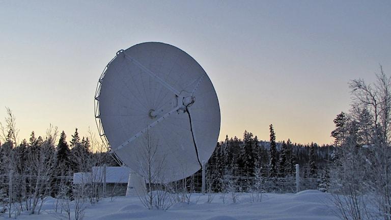 Antenn på Esrange. Foto: Magdalena Martinsson/Sveriges Radio