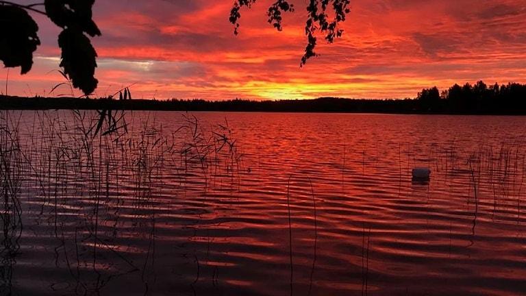 Vatten och röd himmel.