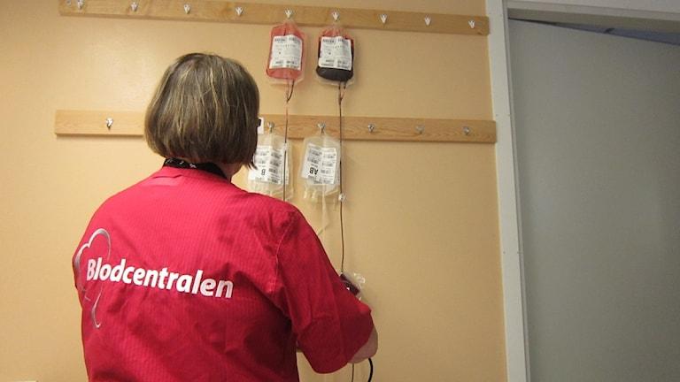 Bara i Boden och Luleå tappas cirka 5 500 blodgivare varje år. Foto: Sveriges Radio.