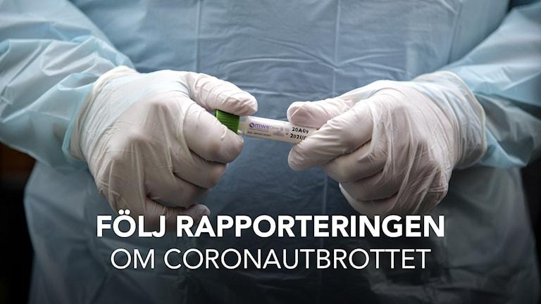 Bild på händer med skyddshandskar och provrör. Text i bilden: Följ rapporteringen om coronautbrottet.