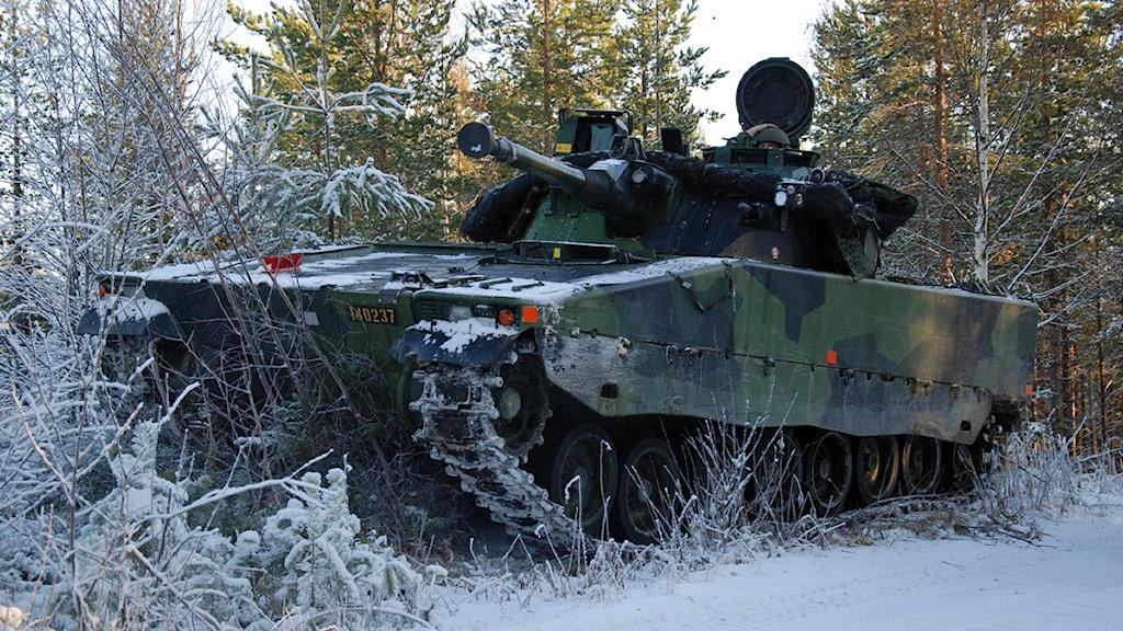 Stridsvagn under militärövning i skogen utanför Boden. Foto: Emil Östlund/Sveriges Radio.