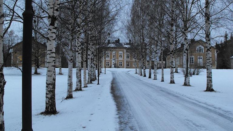 Landshövdingens residens i Luleå. Foto: Sveriges radio