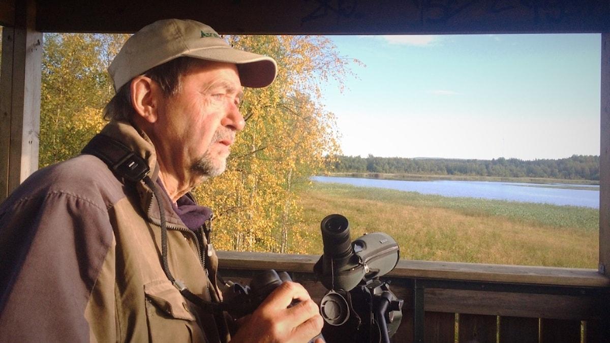 Ornitologen Jan Andersson från Norrbottens ornitologiska förening spanar i gryningen.