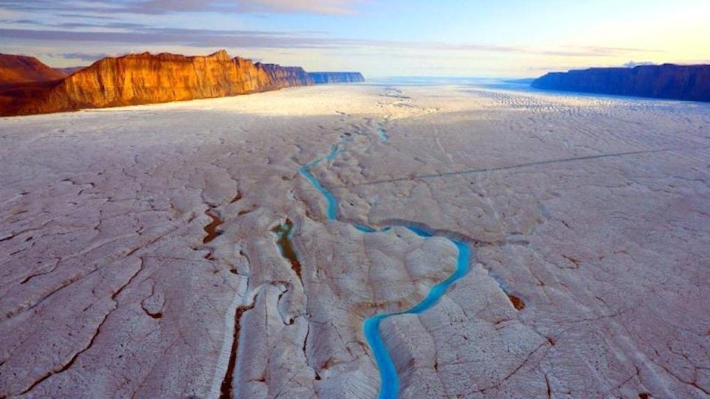 Ryderglaciärens istunga på nordvästra Grönland.