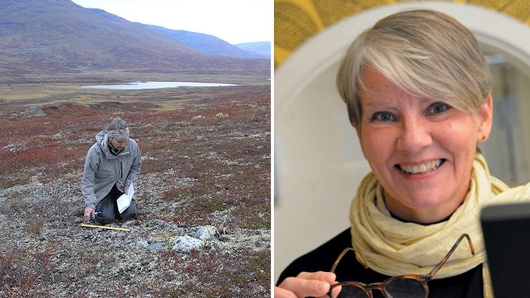 Ingela Bergman i fält i fjällen och porträtt