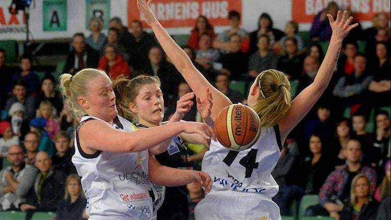 Northland Baskets Josefin Vesterberg mot Udominate Basket, 2012-02-08, Foto: Alf Lindbergh/Pressbilder