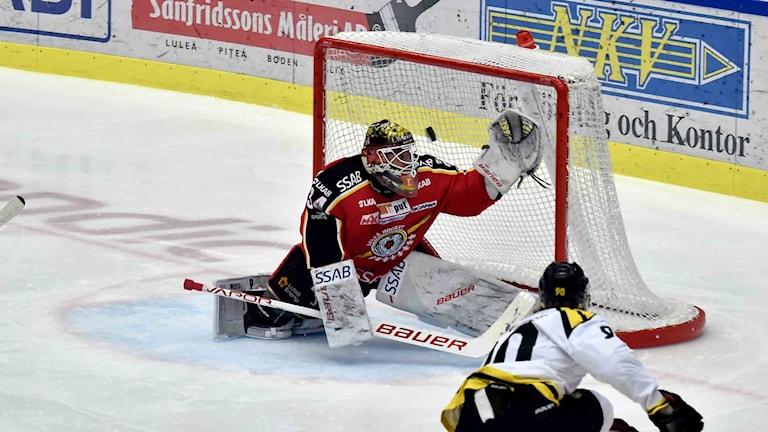 Luleå Hockey mot Brynäs.