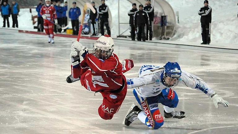 Bandymatch Kalix mot Motala. Foto: Alf Lindbergh/Press