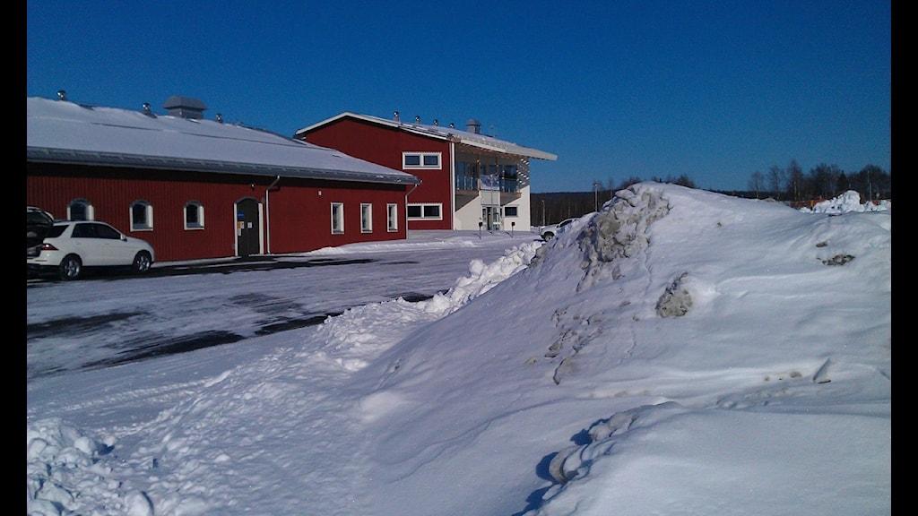 Hästcentrum i Boden. Foto: Roger Kvarnström/Sveriges Radio.