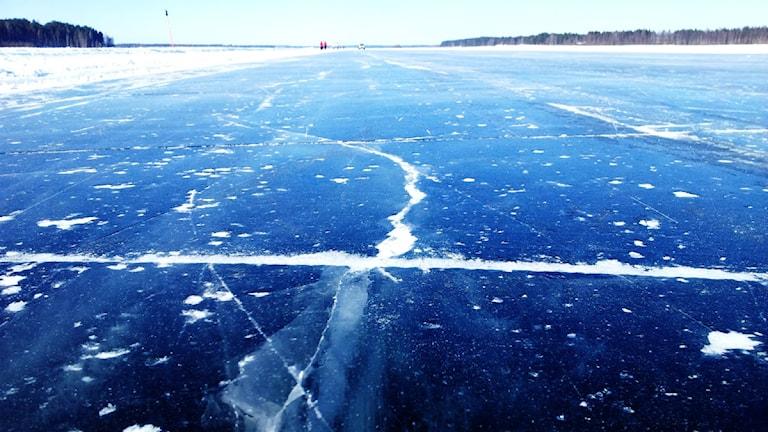 Isväg i Luleå. Foto: Linnea Luttu/Sveriges Radio