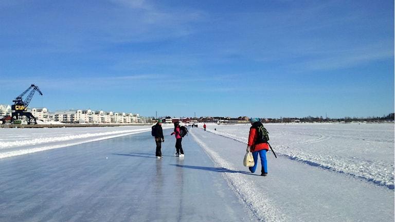 Isvägen i Luleå. Foto: Linnea Luttu/Sveriges Radio