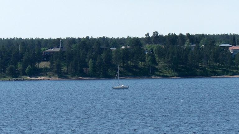 Segelbåt ute på Gråsjälfjärden i Luleå. Foto: Carin Sjöblom/ Sveriges Radio.