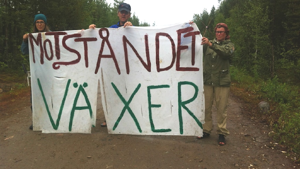 Aktivister i Kallak. Foto: Linus Nygren / Sveriges Radio.