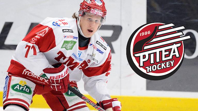 Jonathan Hedström till Piteå. Foto: Mikael Fritzon/Scanpix. Montage: Sveriges Radio.