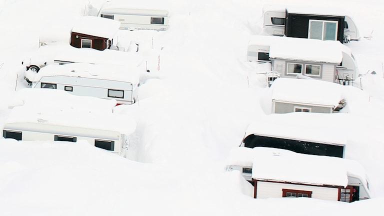 Spiketält i Kiruna kommun.