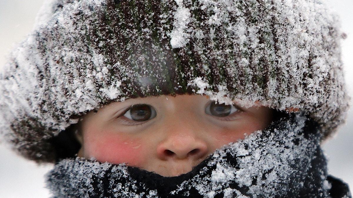 Det gäller att klä sig ordentligt i kylan. Foto: TT.
