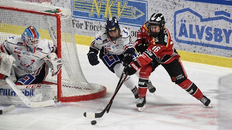 Luleå Hockey/MSSK:s Petra Nieminen mot Linköping HC