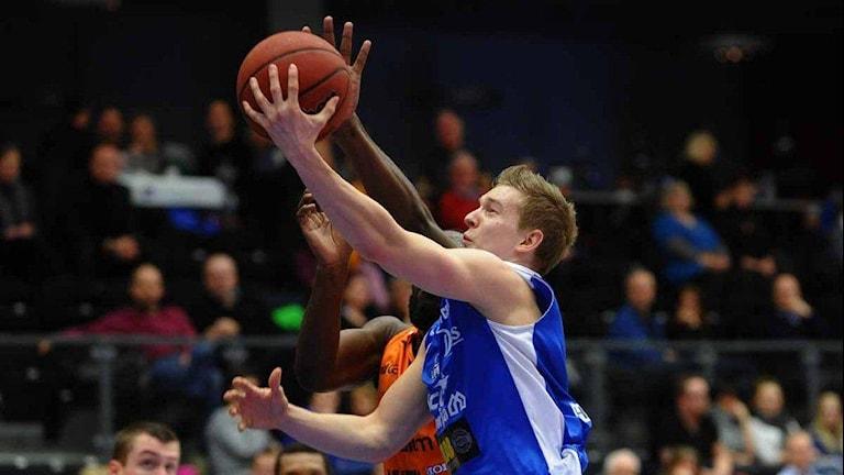 Adam Rönnkvist LF basket